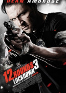 download 12 Rounds 3 Lockdown