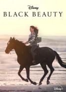 download Black Beauty