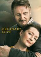 download Ordinary Love