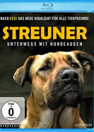 download Streuner - Unterwegs mit Hundeaugen
