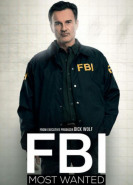 download FBI Most Wanted S01E07