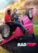 download Bad Trip
