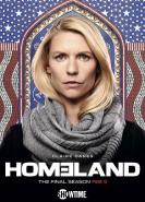 download Homeland S08E08