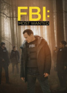 download FBI Most Wanted S01E11