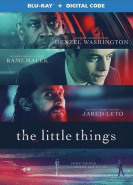 download The Little Things