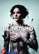 download Blindspot S05E03 Angespannt