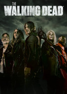 download The Walking Dead S11E04