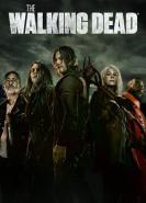 download The Walking Dead S11E05