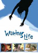 download Waking Life