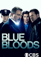 download Blue Bloods Crime Scene New York S11E04