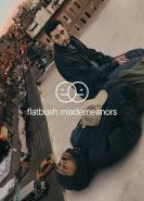 download Flatbush Misdemeanors S01E02