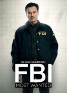 download FBI Most Wanted S02E03
