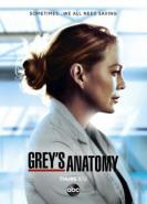 download Greys Anatomy Die jungen Aerzte S17E13