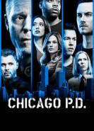 download Chicago PD S06E12
