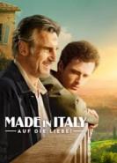 download Made in Italy - Auf die Liebe!