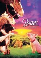download Ein Schweinchen namens Babe