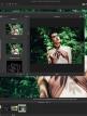 download ACDSee.Photo.Studio.Professional.2018.v11.1.0.863