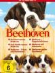 download Ein.Hund.namens.Beethoven.1992.German.DL.720p.HDTV.x264-NORETAiL