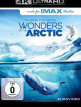 download Wonders.of.the.Arctic.3D.2014.DOCU.DUAL.COMPLETE.UHD.BLURAY-PRECELL