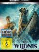 download Ruf.der.Wildnis.2020.German.DL.2160p.UHD.BluRay.x265-ENDSTATiON