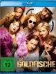 download Die.Goldfische.2019.German.AC3.BDRiP.XViD-HQX