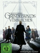 download Phantastische.Tierwesen.Grindelwalds.Verbrechen.2018.German.AC3LD.HC.WEBRiP.XViD-HaN