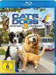 download Cats.and.Dogs.3.Pfoten.vereint.2020.German.DL.AC3.Dubbed.1080p.BluRay.x264-PsO