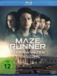 download Maze.Runner.Die.Auserwaehlten.in.der.Todeszone.German.2018.AC3.BDRiP.x264-XF