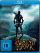 download Rising.Hawk.2020.German.AC3.DL.720p.WEB-DL.h264-PS