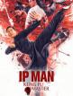 download Ip.Man.Kung.Fu.Master.2019.GERMAN.AC3.BDRiP.XViD-57r