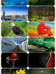 download Beautiful.Mixed.Wallpapers.Pack.619