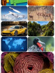 download Beautiful.Mixed.Wallpapers.Pack.679