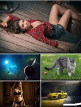 download LIFEstyle.News.Mix.Wallpapers.Part.(1370)