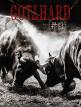 download Gotthard.-.#13.(2020)