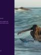 download Adobe.Premiere.Rush.v1.5.8.550