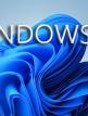download Microsoft.Windows.11.Professional.21H2.Build.22000.65.+.Microsoft.Office.2019.ProPlus.Retail