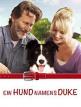 download Ein.Hund.namens.Duke.2012.German.HDTVRip.x264-NORETAiL