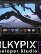 download SILKYPIX.Developer.Studio.v10.1.6.0
