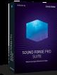 download Magix.Sound.Forge.Pro.Suite.v14.0.0.31