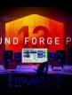 download Magix.Sound.Forge.Pro.v13.0.0.96