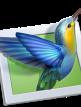 download PicturesToExe.Deluxe.v9.0.14