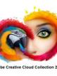 download Adobe.Creative.Cloud.Collection.Januar.2019