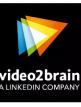 download LinkedIn.PowerPoint.Visualisierung