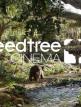 download SpeedTree.Modeler.8.3.0.Cinema.Edition.(x64)