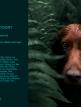 download Adobe.Photoshop.Lightroom.CC.v3.2.0