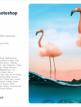 download Adobe.Photoshop.2021.v22.0.1.73.(x64)