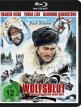 download Die.Teufelsschlucht.der.wilden.Woelfe.1974.German.1080p.BluRay.x264-SPiCY