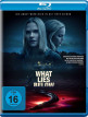 download What.Lies.Below.2020.German.DL.1080p.BluRay.x264-DETAiLS