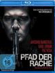 download Pfad.der.Rache.2017.German.DL.1080p.BluRay.AVC-AVC4D