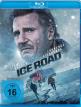 download The.Ice.Road.2021.BDRiP.MD.German.x264-MTZ